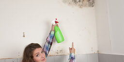 DIY Tips to Eliminate Mould in Your Home
