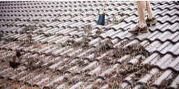 Things you should know about Roof Cleaning